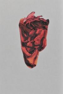 PY-Untitled-folddrawing
